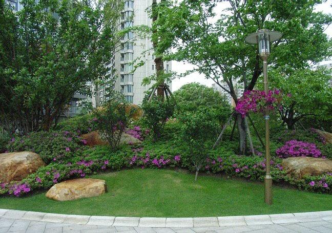 园林景观设计公司带您一起探讨绿化种植设计方法?
