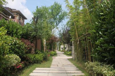 """深圳景观设计公司:新的生活,由""""墙""""开始"""